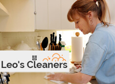 Domestic Cleaners W4