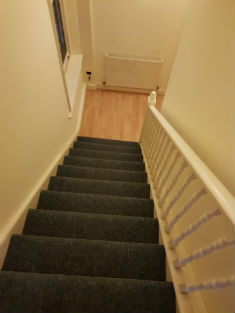 clean stairs carpet